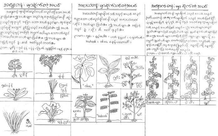 Stacking Flyer in Burmese