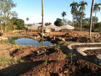 Banana Circles, pond, and terraces, Farm to table Design and implementation,Dominican Republic, 2013