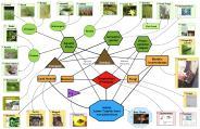 final aquaculture ecosystem