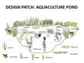 Aquaculture Slide