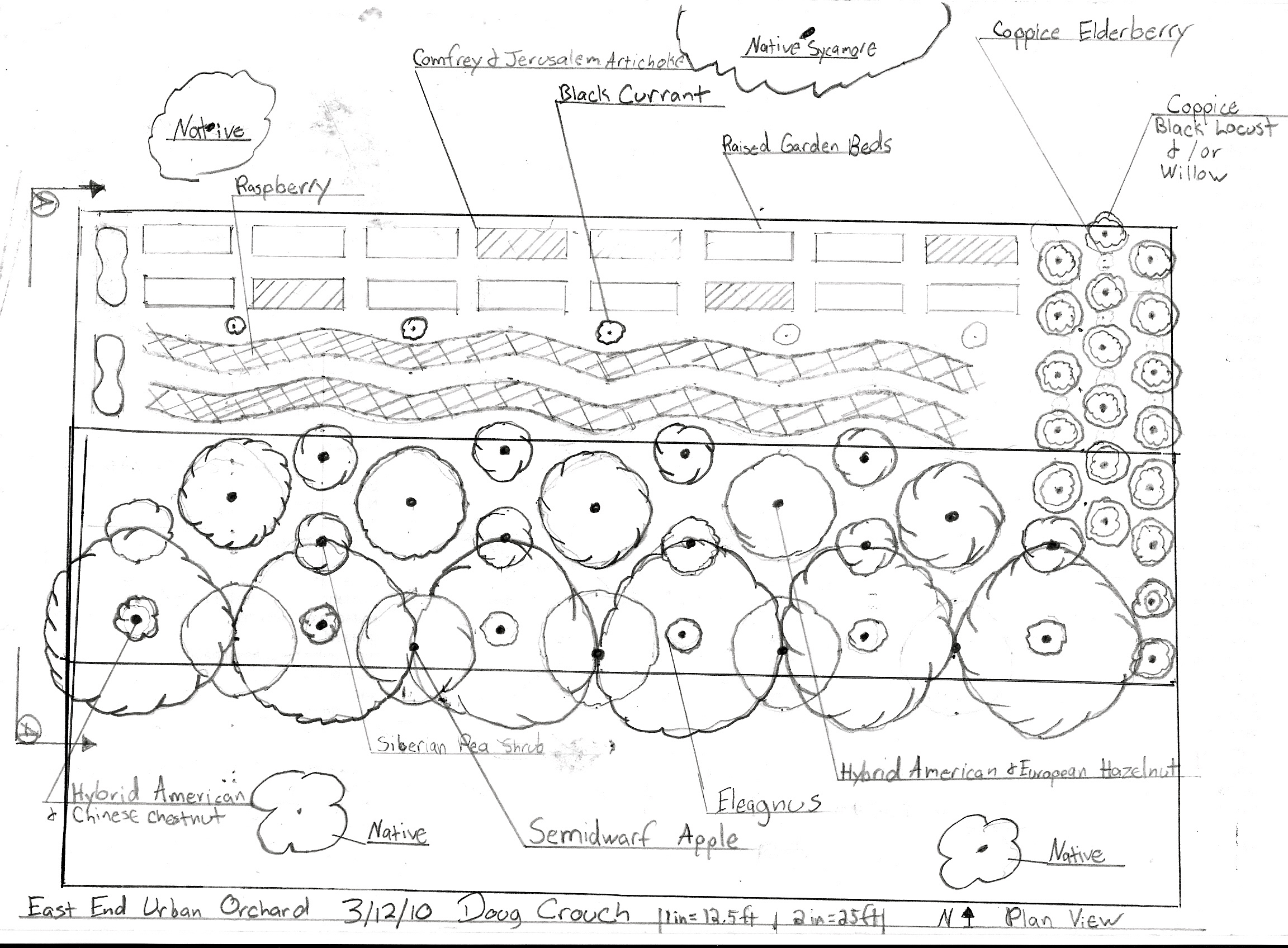 Urban permaculture in cincinnati oh usa treeyo for View plans