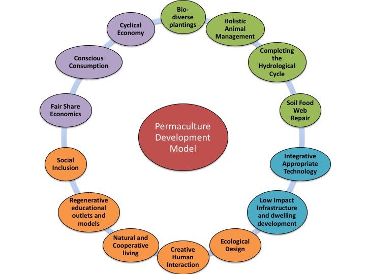 TreeYo Permaculture Development model
