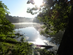 Treasure Lake- recreation and agroforestry outlet- one of the views on our Permaculture walk