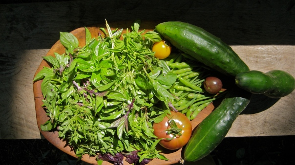 Permaculture Garden harvest from Argentina after months and months of soil improvements and Permaculture Design Application