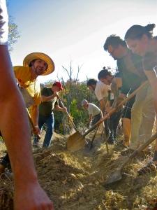 cincinnati Permaculture digging