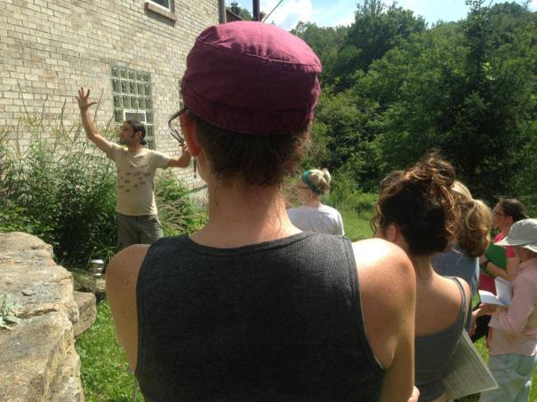 teaching at Parkwalk Permaculture- looking at microclimate and using vines to alter