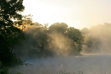 treasure lake mornings!