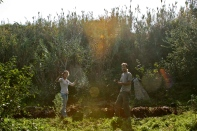 Susana and Romeiro, the architects of the mediterranean garden planting