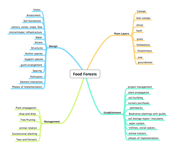 Food forest mind map