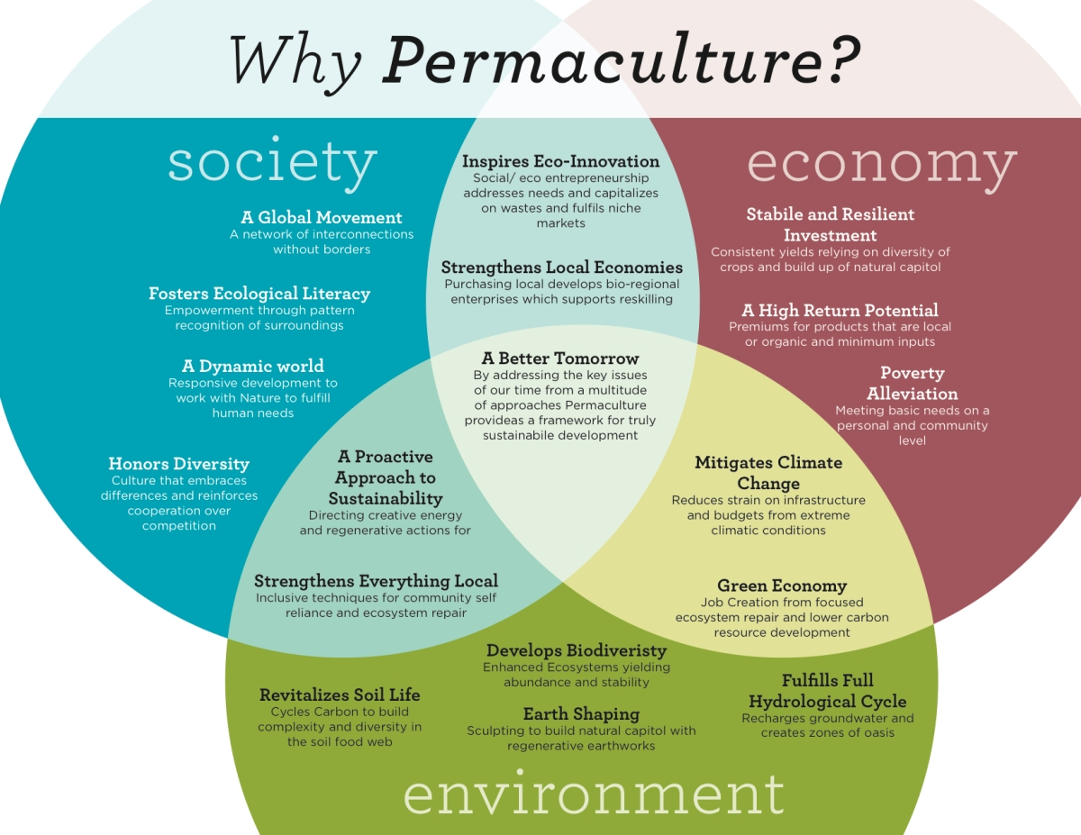 The Case For Permaculture?