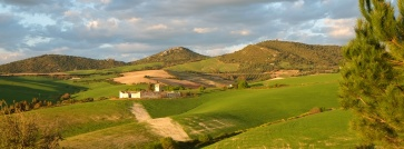 the hills around Suryalila