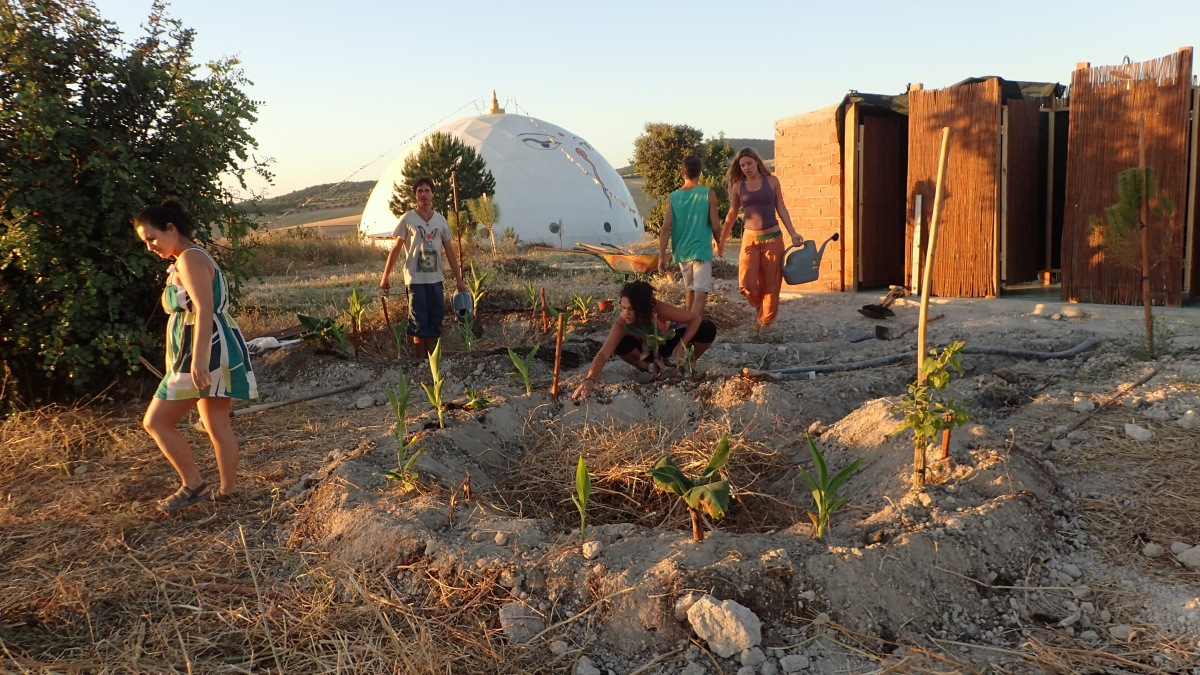 Advanced Permaculture Course: Earthworks and Food Forest Land Regeneration: Spain Dec. 2016