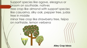 initial brainstorm for alley cropping