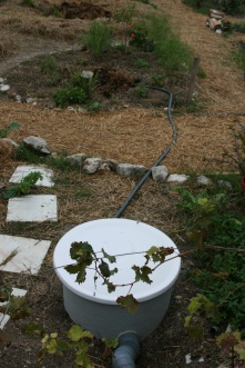 greywater grease trap