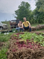 Composting fab ferments beet kvass waste, Treasure Lake, KY