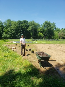 Luke getting ready to plant the triangle garden after we did the layout