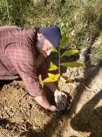Tom enacting #letsplantsometreesyo, Treasure Lake, KY