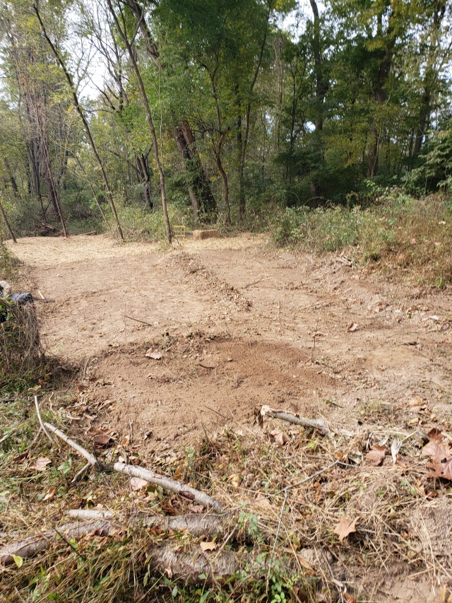 expanded campground/ agroforestry site in between camp 3 and 4