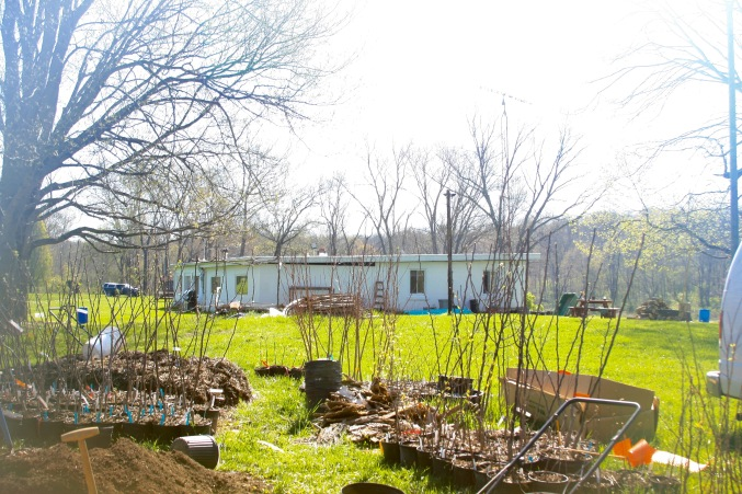 Nursery in spring at the lake